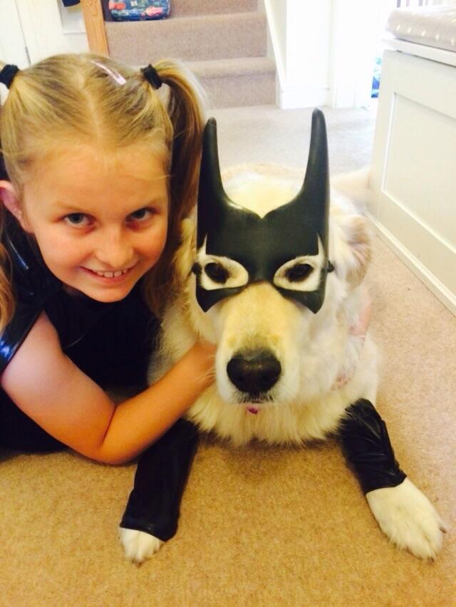 Best dog with children, golden retriever