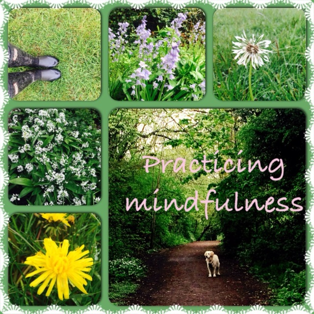 Mindfulness, meditation, Pinkfizzmum and ponytails